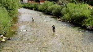 Hans beim Fliegenfischen in der weißen Traun