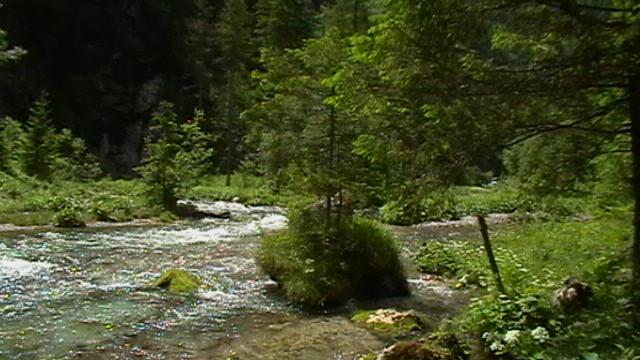 Torrenner Ache oberhalb vom Bärenhof