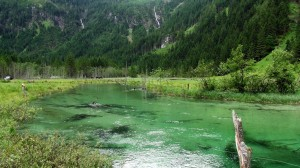 Fliegenfischen in der Großarler Ache in Österreich