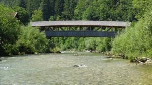 22.06.14 - weiße Traun bei der Holzbrücke in Eisenärzt