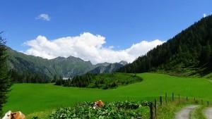 Hirschgruben Alm Landschaftsausblick