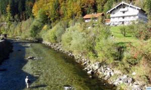 weisse Traun, Hausstrecke beim Forellenhof, Hans beim Fischen