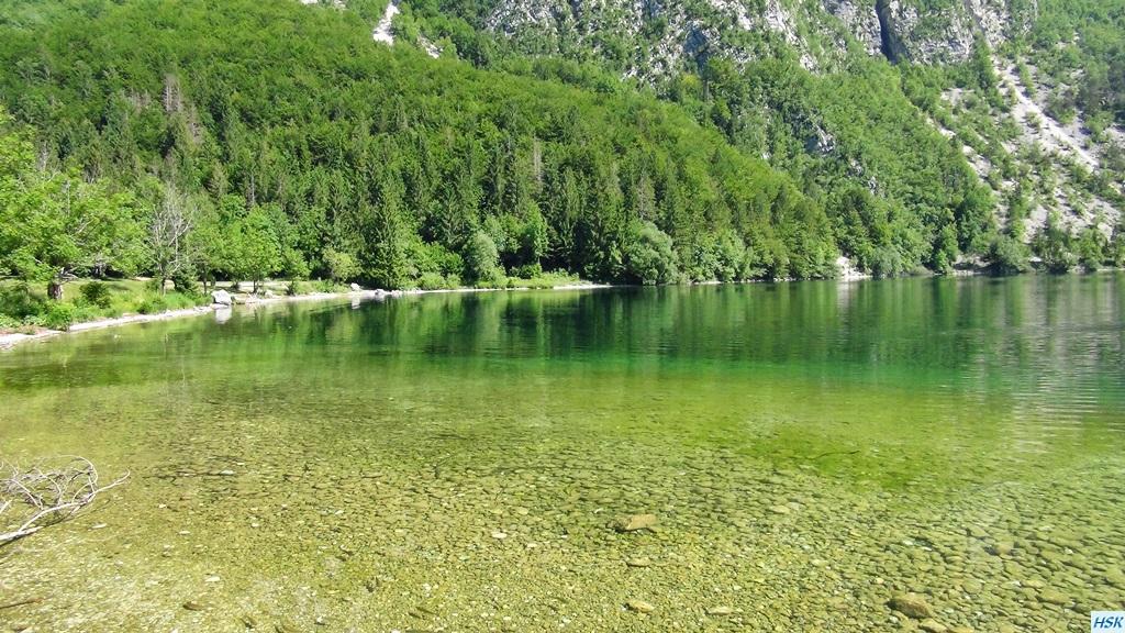 Bohinjsko Jezero, See in Slowenien im Juni 2015