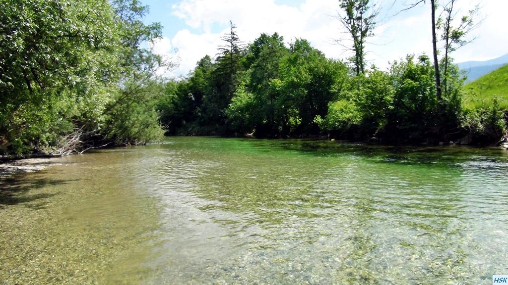 Fliegenfischen in der Sava Bohinjka im Juni 2015
