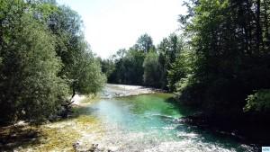 07.06.15 Sava Bohinjka in Slowenien (18)