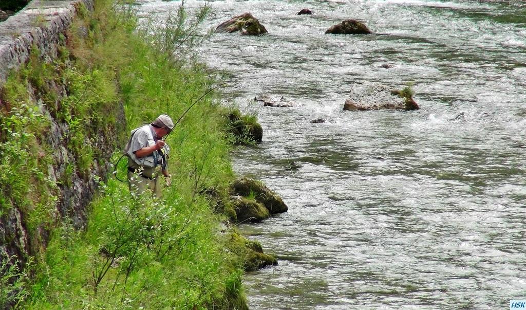 Fliegenfischen in der weißen Traun im  Juni 2015