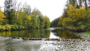 Fliegenfischen in der deutschen Traun, traditonelle Strecke